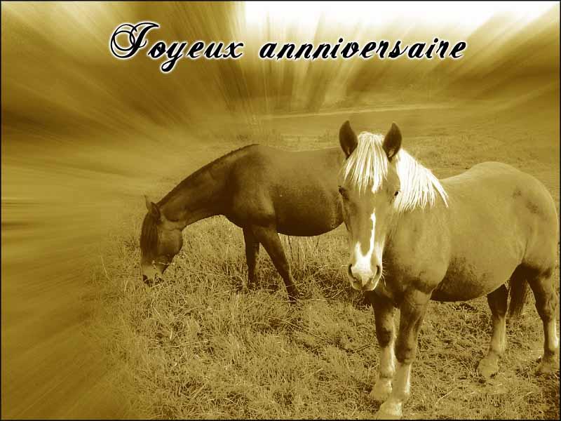 jeux anniversaire cheval